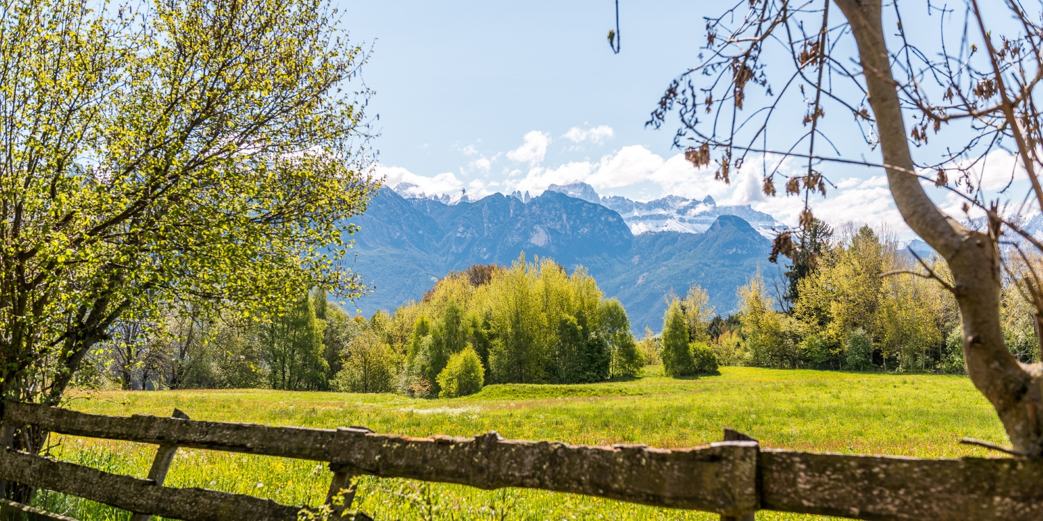 Fruehling am Ritten in Suedtirol